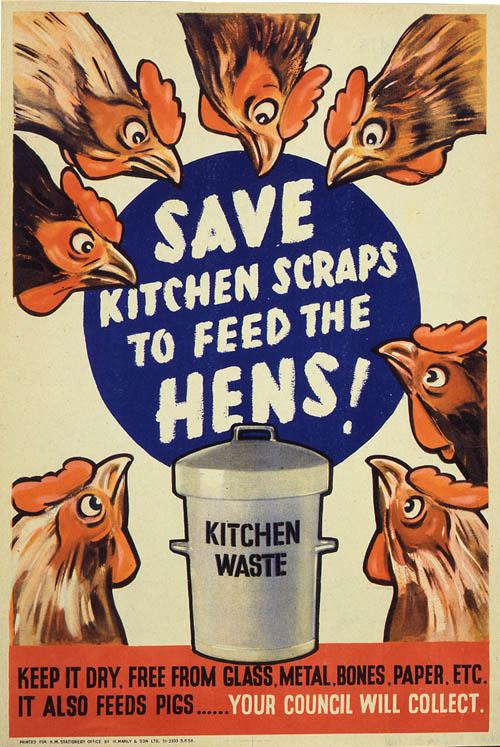 Beacon Council Hatches New Chicken Ordinance
