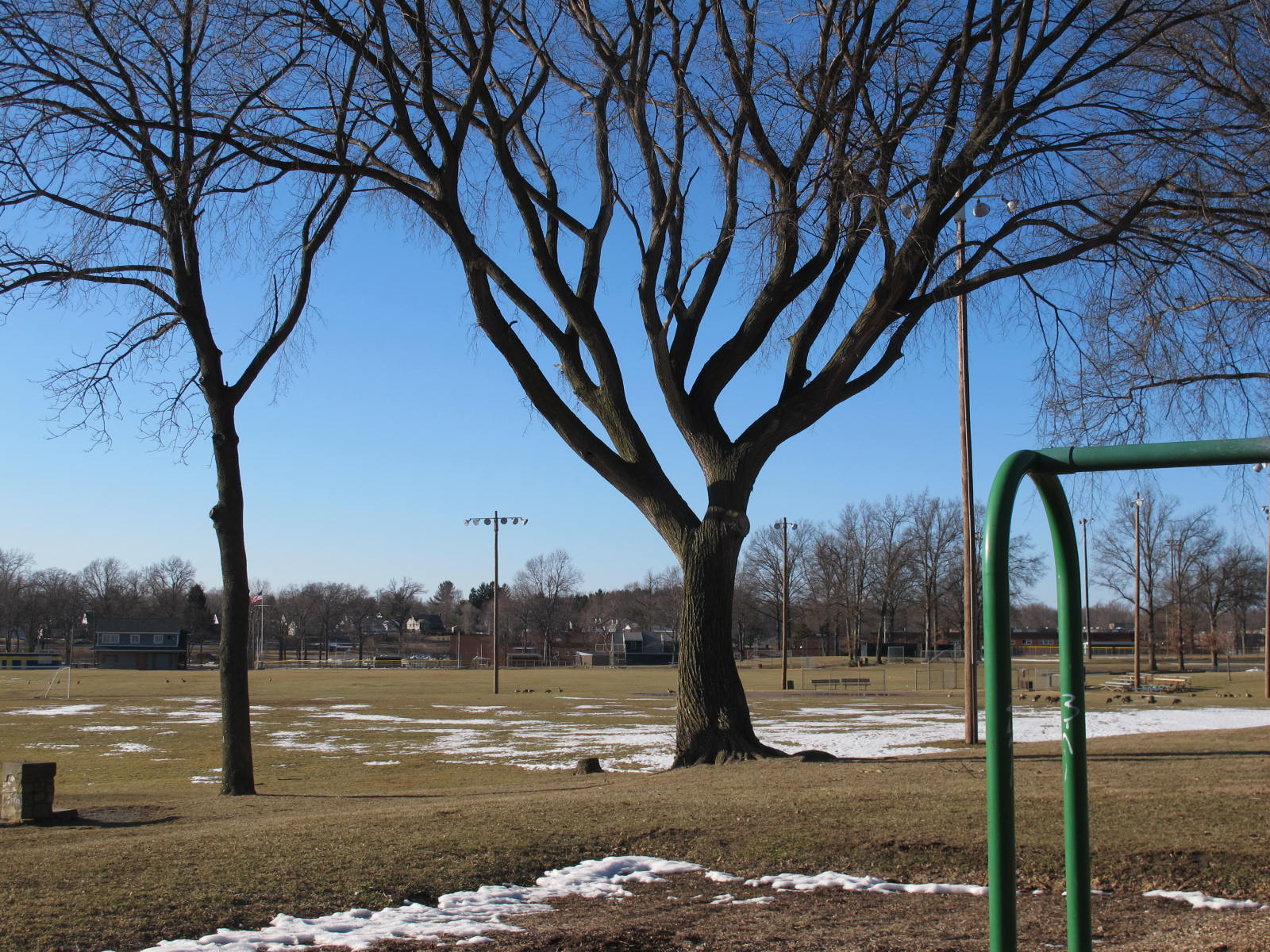 City Parks Begin to Thaw