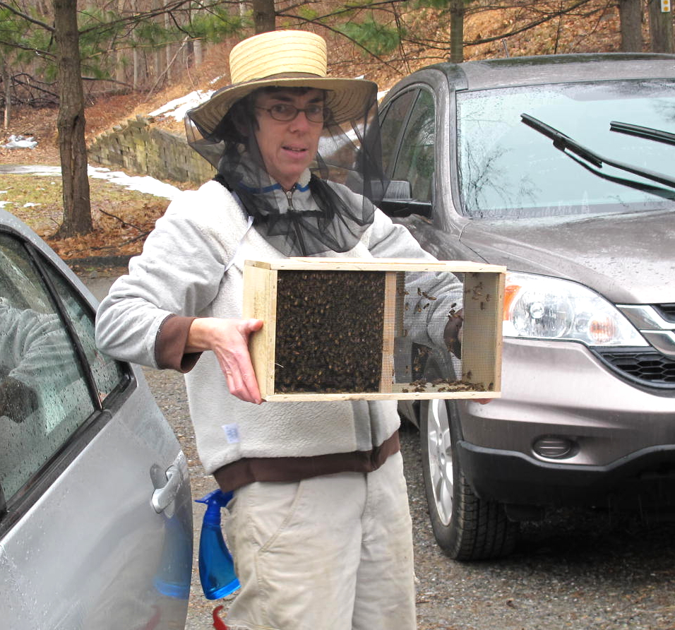 A Visit With the Beacon Bee Lady