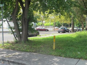 A plan recently nixed by city council would have rezoned this vacant lot and several adjacent properties to allow for parking to be built.