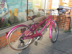 The Mifflin is nicely appointed for transportation cycling with fenders, chain guard, wide tires and upright bars.